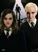 Dramione or Drarry by Dhesia