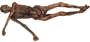 Mummy 6. Otzi by LighthouseLady