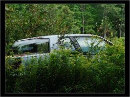 Overgrown Car by ScaperDeage
