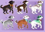 Canine Adopts (5/6 Open) by HP-Adopts