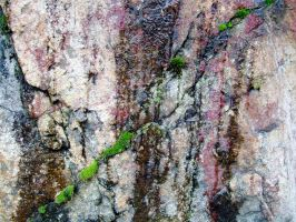 Mossy Fissure by Baq-Stock
