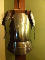 European breast plate and shoulders by CheshireAFox