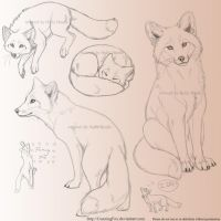 Red fox sketchpage by CunningFox