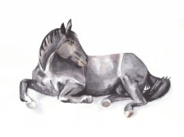 Horse 40 - Rest by Paintwick