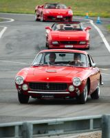 1964 Ferrari GT250 Lusso by FurLined