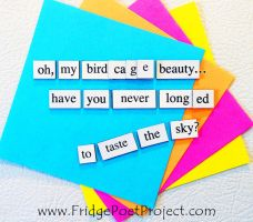 The Daily Magnet #355 by FridgePoetProject