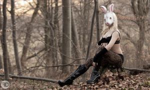 rabbit in the forrest by sp333d1