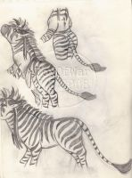 My Zebra, part III by FoxOFWar