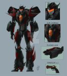 TF Shadowstorm design by pika