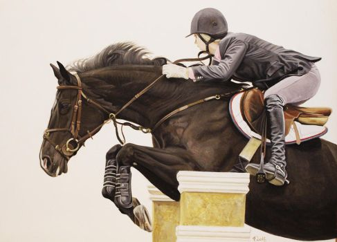 Showjumping 1 by CBailey52