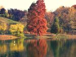 just...autumn by NaTuRe-In-My-BlooD