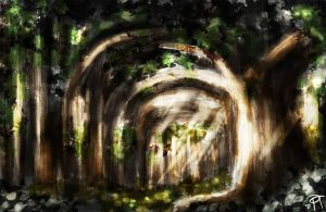 Forest Speed Paint