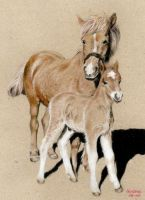 Mother and child by Julemus