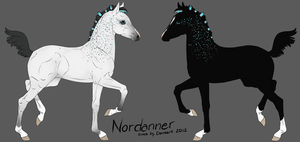 Nordanner Foal 6028 by RW-Nordanners
