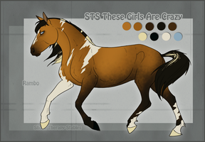 STS Stallion- Rambo by ShockTherapyStables