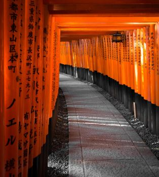 Torii Gates by cluster5020