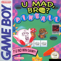 THE HARDEST PINBALL GAME EVAR by SkippyWoodFood