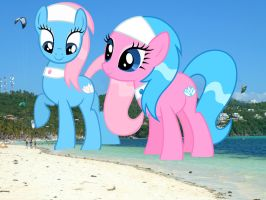 Spa Ponies at the Beach by OtterP