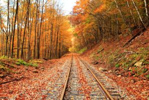 Rail into the future by Celem