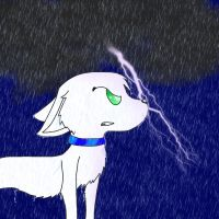 Stand in the rain by SummerTheSkitty