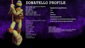 Donatello's profile (Shallow) by SirMadam