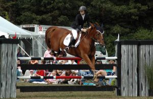 Jumper Stock 16 by iheartsomersby