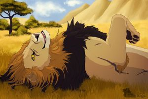 EBC: Mirum - The Maned Lioness by UnknownLioness