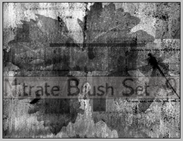 brush set 9 by nitrate