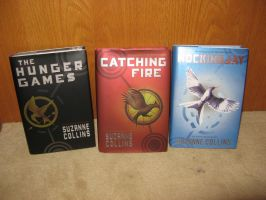The Hunger Games Collection Part 8 by LeaveItToVi