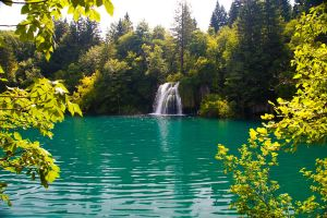 Plitvice green IV by DeviantTeddine