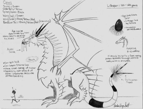 Poison-Swamp Dragon Species by Amber-01