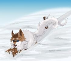 .: Winterfun :. by Shien-Ra