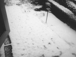 It's snowing in February by LordReserei