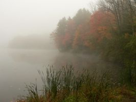 Fog and Pond by barcon53