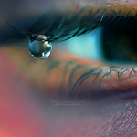 Tears of a Fairy. II by dragonfly-oli