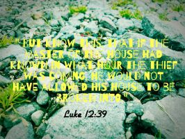 Luke 12:39 by Forev-Amore