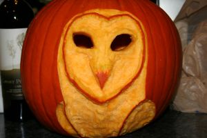 Barn Owl Pumpkin by LadySilverwood