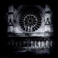 Rose Window by lostknightkg