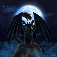 Toothless at Night by Shilokh