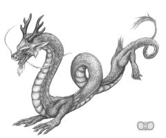 Chinese Dragon by squeakychewtoy