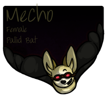 Mecho the Pallid Bat by Perfect-Reality
