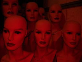The Ladies RED by advs14u2nv