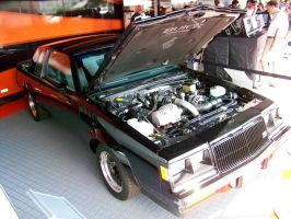 1987 Buick GNX by DetroitDemigod