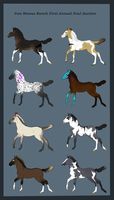 IHR Foal Auction -WINNERS- by Vox-Morda