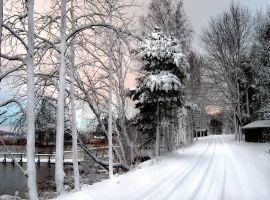Winter Moments by Petritap