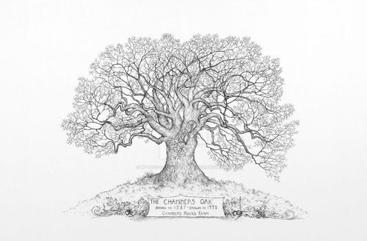 Chambers Oak by Mythos-Illustrations