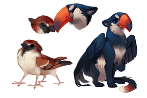 Sparrow and Toucan by fancypigeon