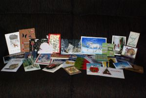 Holiday Card Project Cards by Astralseed