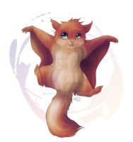 Flying squirrel by zarash