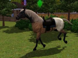 Death The Horse V1 -Sims3- by Ryoutou